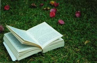 does novel need prologue